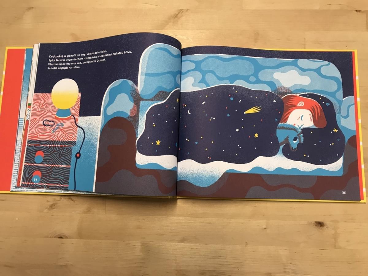 Dětská kniha Největší přání - Ester Stará - Skibi Kids e493a2854d